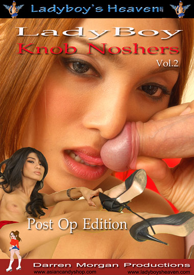 LadyBoy Knob Noshers 2 (2011)