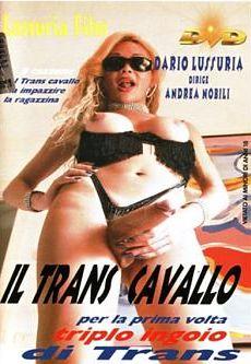 Il Trans Cavallo (2001)