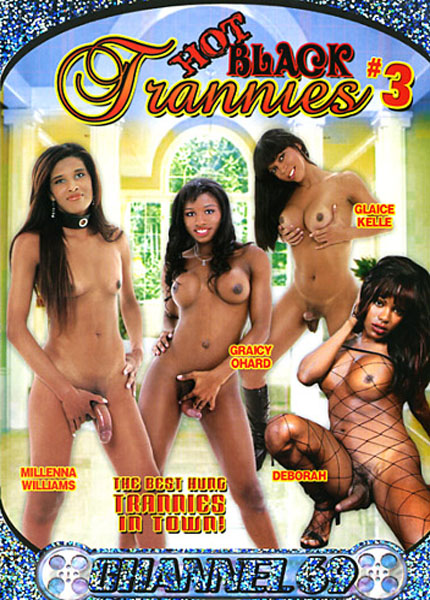 Hot Black Trannies 3 (2006)