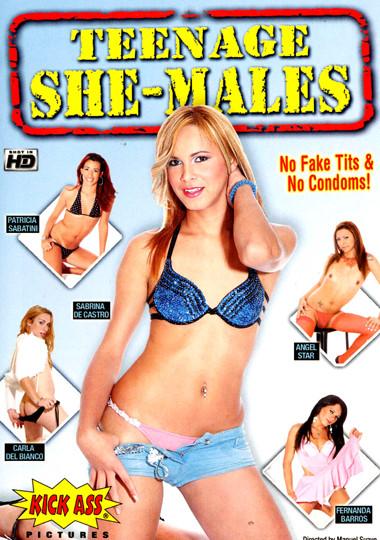 Teenage She-Males (2007)