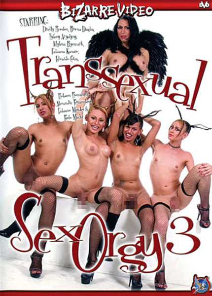 Transsexual Sex Orgy 3 (2006)