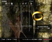 sos-schlong-controller-wip-01_0.jpg