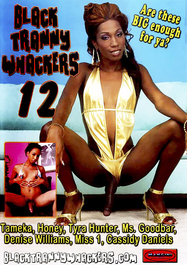 Black Tranny Whackers 12 (2009)