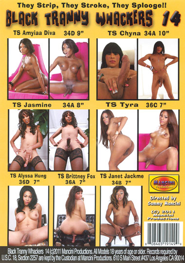 Black Tranny Whackers 14 (2011)