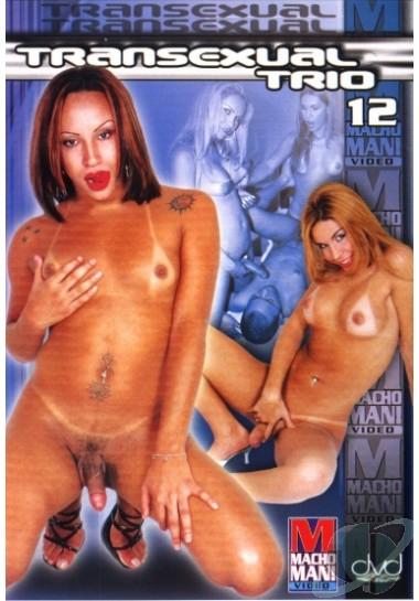 Transexual Trio 12 (2005)