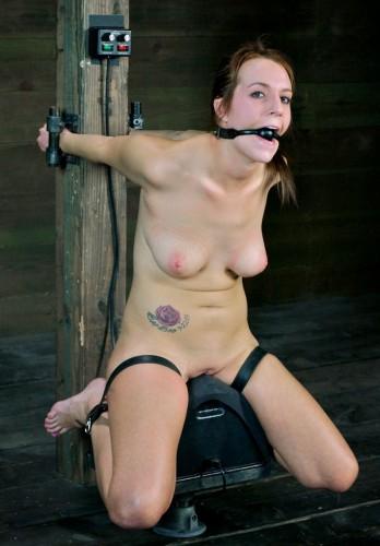 sybian girl