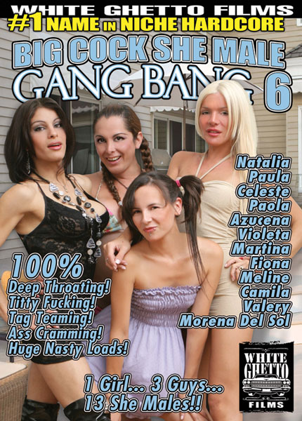 Big Cock She Male Gang Bang 6 (2013)