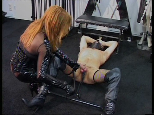 Slave For Sale Female Domination