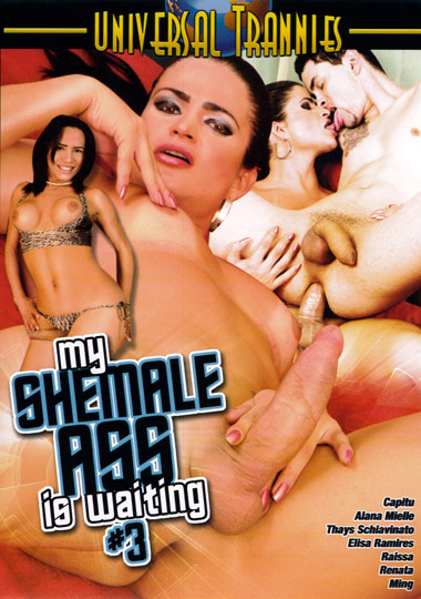 My Shemale Ass Is Waiting 3 (2012)