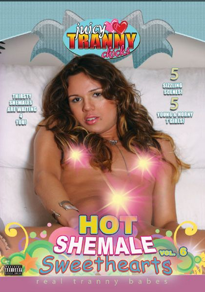 Hot Shemale Sweethearts 6 (2009)