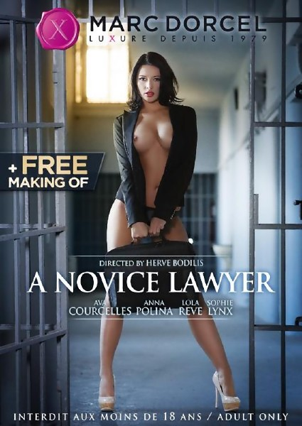 A Novice Lawyer (2014)