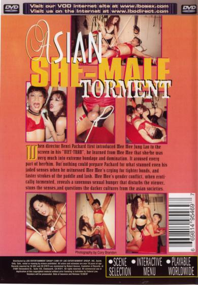 Asian She-Male Torment (1997)