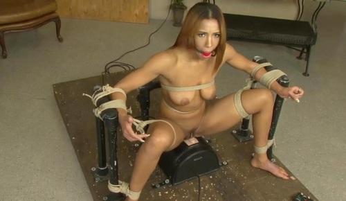 bondage sex chat sybian sex machine video