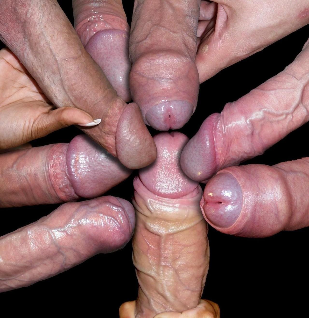 Типы пенисов