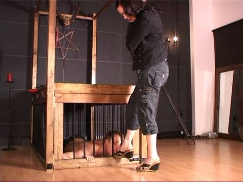 Footworship Female Domination