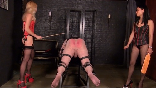 Femdom 1609132 Female Domination