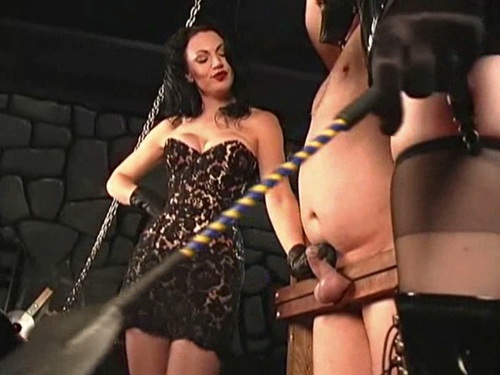 Sacrifice Your Balls Female Domination