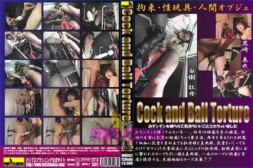 MV-083 Cock And Ball Torture Asian Femdom