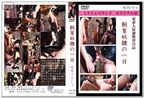 MLDO-016 Femdom Asian Femdom