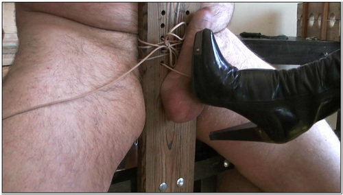 Cbt Day Female Domination
