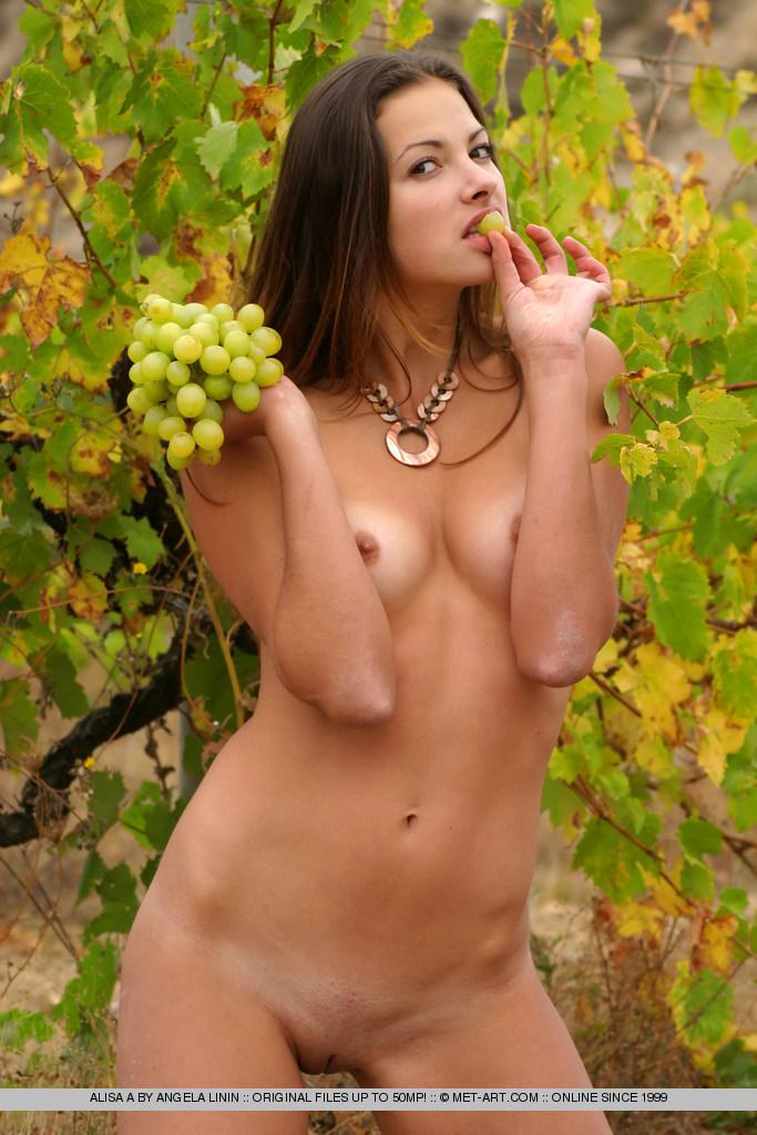 Y ahora para los mendocinos, especial viñedos