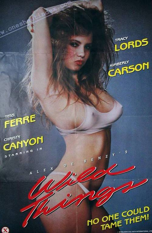 Christy canyon billy dee steve drake - 1 part 1