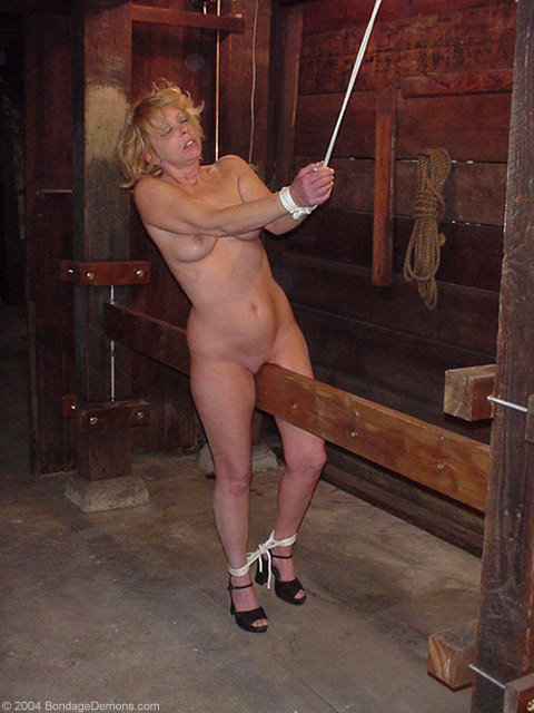 Bdsm pussy whipped rough ass fucking