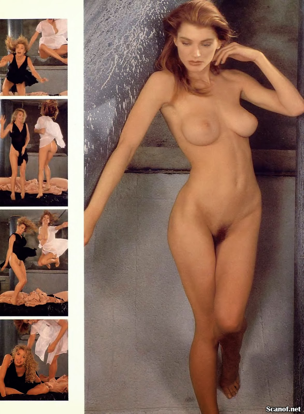 Shannon y tracy tweed nude
